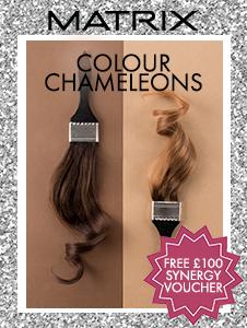 Colour Chameleons - 72 Tube Deal