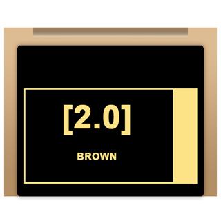 Insight Colour - 2/0 Brown 100ml
