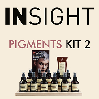 Insight Pigments Kit 2