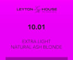 Leyton House Silk Demi Light Natural Ash Blonde 80ml