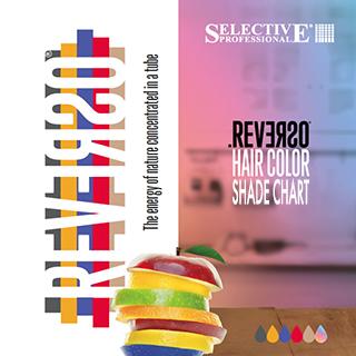 Reverso Colour Shade Chart 2019