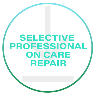 SELECTIVE PROFESSIONAL ON CARE REPAIR