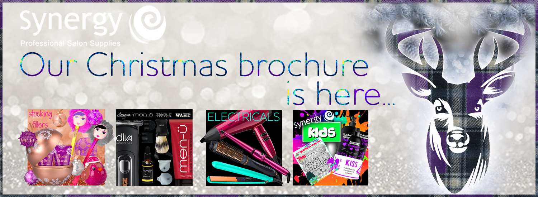 Christmas Brochure banner